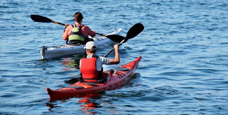 People kayaking on the water