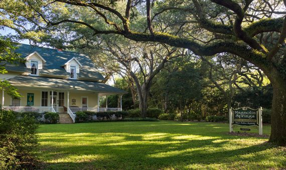 Front lawn at Magnolia Springs