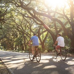 A bike ride through the trees at our Alabama bed and breakfast