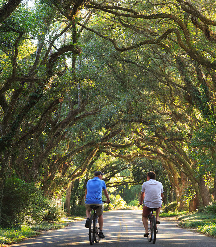 Riding bikes under the trees on a sunny day at our Fairhope, AL bed and breakfast
