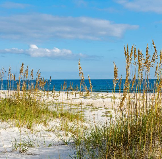 White sands of Orange Beach