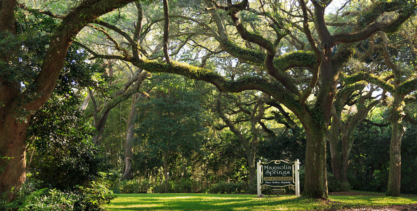 Magnolia Springs sign by the trees at our Gulf Shores, AL bed and breakfast