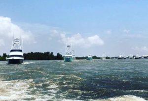 Boats at the Orange Beach Billfish Classic